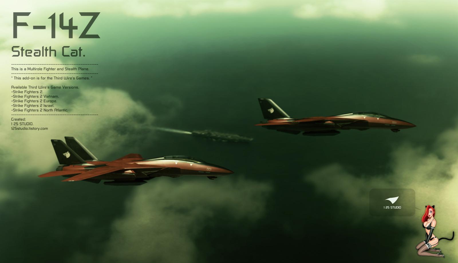 F-14-6.jpg